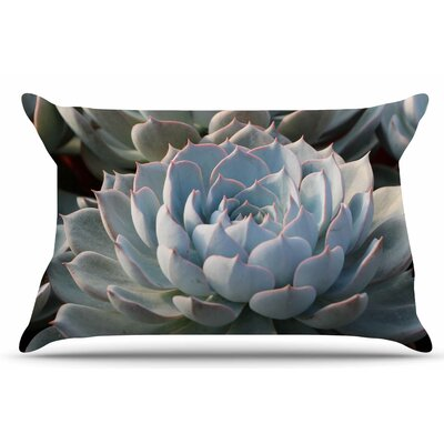Succulent Love by Suzanne Carter Pillow Sham Size: King