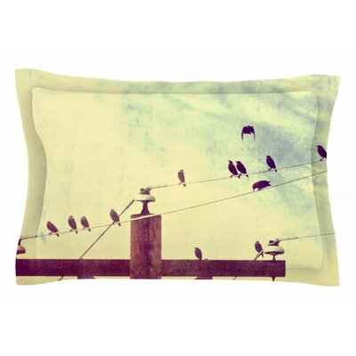 Vintage Birds on a Wire 1 by Sylvia Coomes Pillow Sham Size: Queen