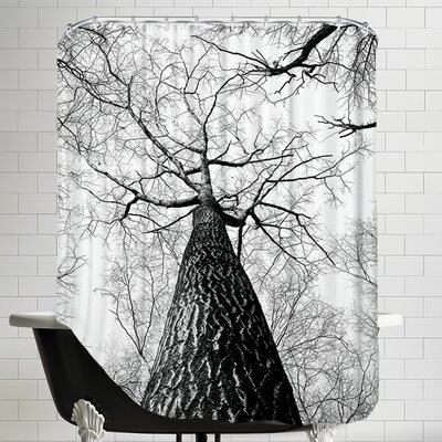 Branches Tree Nature Landscape Shower Curtain