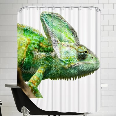 Reptile Animal Shower Curtain