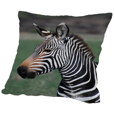 Zebra Africa Throw Pillow Size: 14 H x 14 W x 2 D