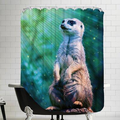 Wildlife Meerkat with Stars Shower Curtain