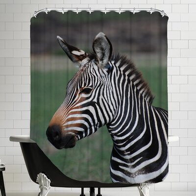 Zebra Africa Shower Curtain