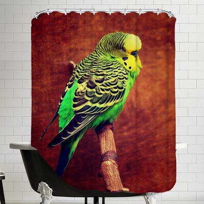 Budgie Bird Animal Shower Curtain