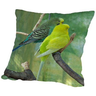 Budgie Bird Parrot Cotton Throw Pillow Size: 14 H x 14 W x 2 D