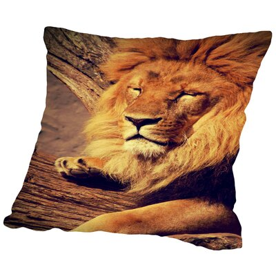 Lion Wildlife Cat Animal Africa Throw Pillow Size: 14 H x 14 W x 2 D