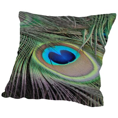 Peafowl Bird Feather Throw Pillow Size: 14 H x 14 W x 2 D