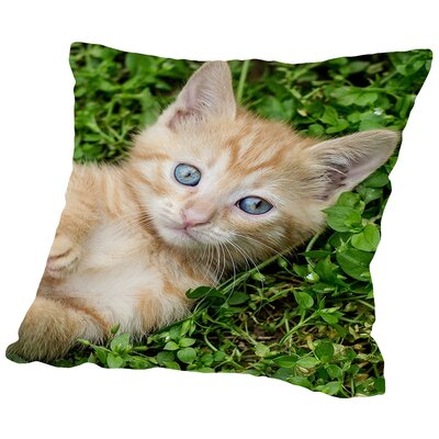 Cat Animal Throw Pillow Size: 18 H x 18 W x 2 D