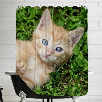 Cat Animal Shower Curtain