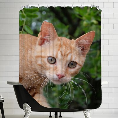 Lovely Cat Animal Shower Curtain