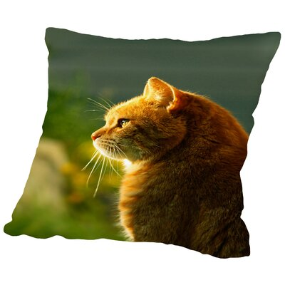 Wonderful Cat with Sun Throw Pillow Size: 18 H x 18 W x 2 D