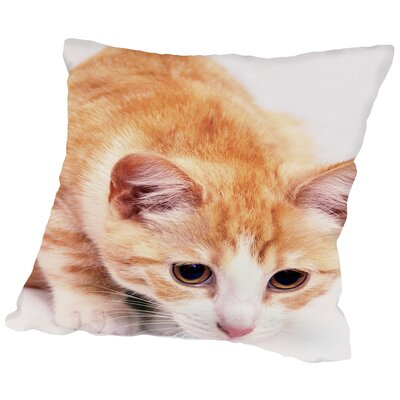 Red Cute Cat Pet Friend Throw Pillow Size: 14 H x 14 W x 2 D