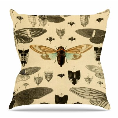 Vintage Cicada by Suzanne Carter Throw Pillow Size: 26 H x 26 W x 4 D