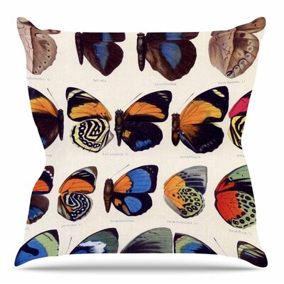 Vintage Wings by Suzanne Carter Throw Pillow Size: 16 H x 16 W x 4 D
