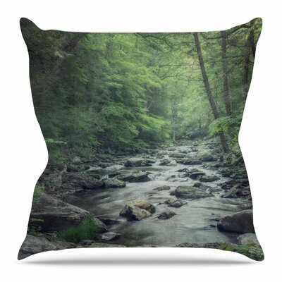 Misty Forest Stream by Suzanne Harford Throw Pillow Size: 20