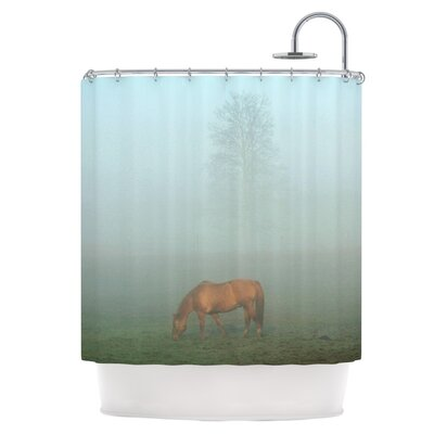 Horse in Fog Shower Curtain