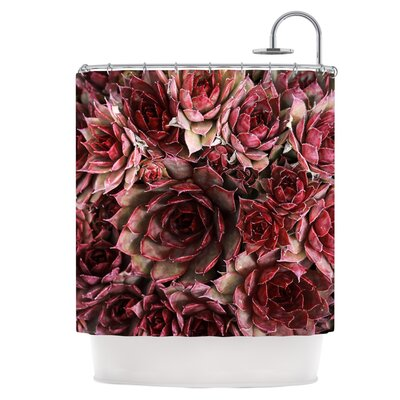 Red Succulents Shower Curtain