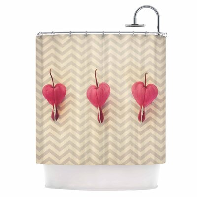 Heart with Chevrons Shower Curtain