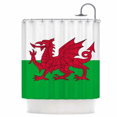 Flag of Wales Shower Curtain