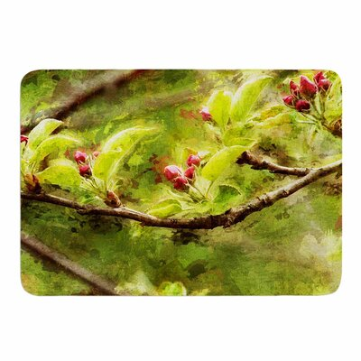 Painted Apple Blossom Branch by Ginkelmier Memory Foam Bath Mat Size: 24 L x 17 W