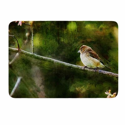 Painted Songbird by Ginkelmier Memory Foam Bath Mat Size: 24 L x 17 W