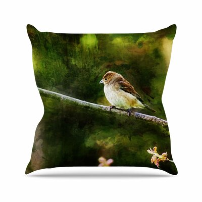 Painted Songbird Throw Pillow Size: 16 H x 16 W x 6 D