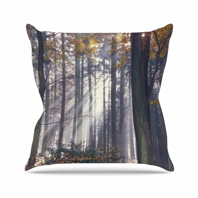Autumn Sunbeams Alison Coxon Trees Photography Throw Pillow Size: 16 H x 16 W x 4 D