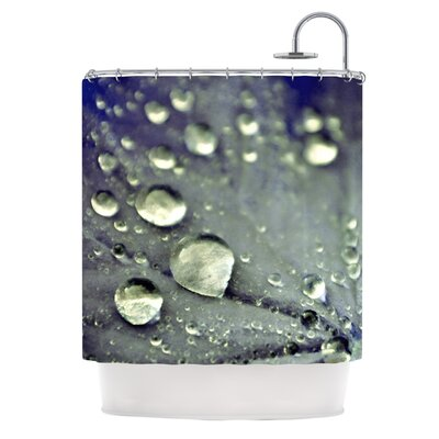 Water Droplets Shower Curtain Color: Aqua