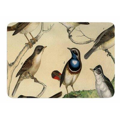 Vintage Birds by Suzanne Carter Memory Foam Bath Mat