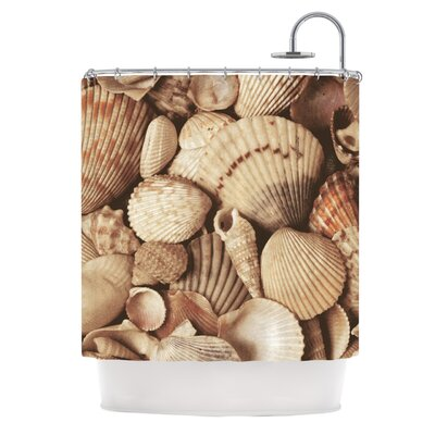 Shells by Heidi Jennings Shower Curtain