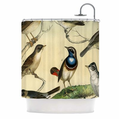 Vintage Birds by Suzanne Carter Nature Shower Curtain