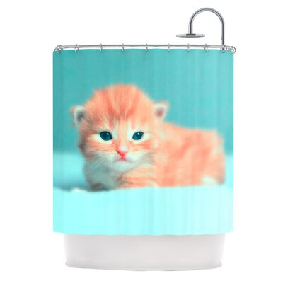 Dreamcat by Monika Strigel Shower Curtain