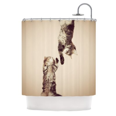 Upside Down by Monika Strigel Cats Shower Curtain