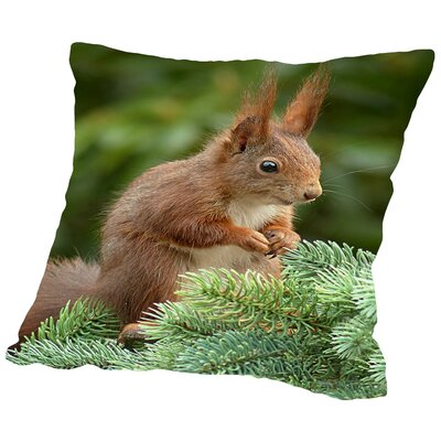Animal Squirrel Nature Cotton Throw Pillow Size: 14 H x 14 W x 2 D