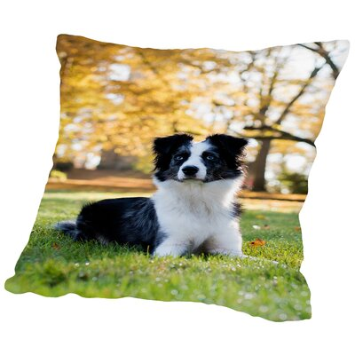 Australian Shepard Dog Cotton Throw Pillow Size: 14 H x 14 W x 2 D