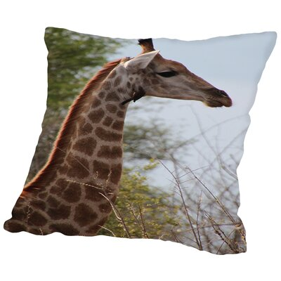 Giraffe Savanna Cotton Throw Pillow Size: 18