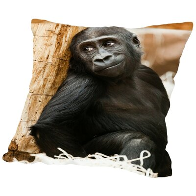 Baby Monkey Ape Animal Cotton Throw Pillow Size: 14 H x 14 W x 2 D