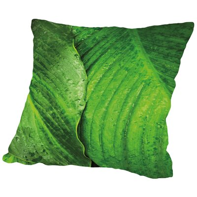 Jardim Botanico III Throw Pillow Size: 14 H x 14 W x 2 D