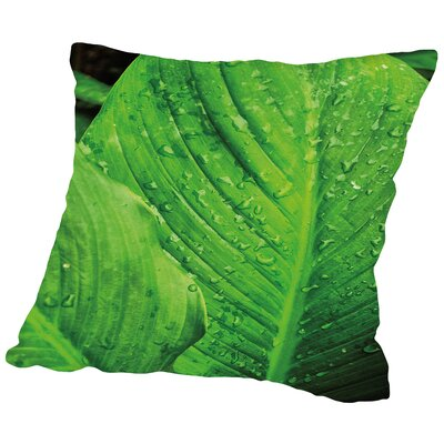 Jardim Botanico I Throw Pillow Size: 18 H x 18 W x 2 D