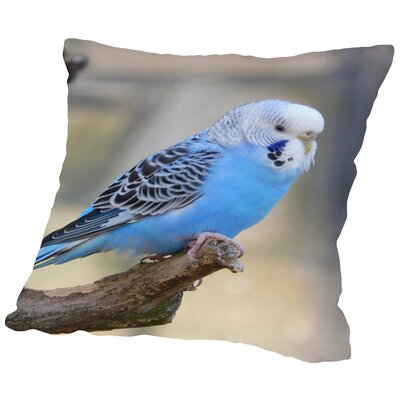 Blue Budgie Bird Parrot Cotton Throw Pillow Size: 14 H x 14 W x 2 D