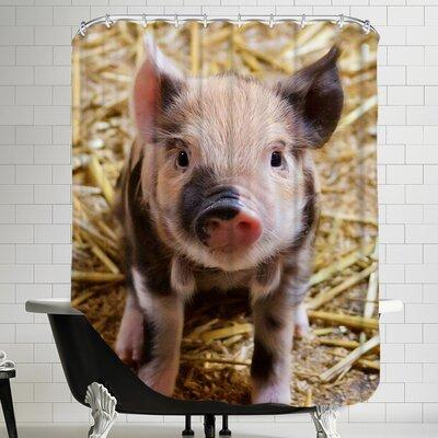 Pig Piglet Farm Shower Curtain Color: Natural