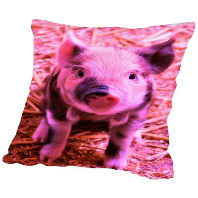 Pig Piglet Farm Throw Pillow Size: 18 H x 18 W x 2 D, Color: Funky