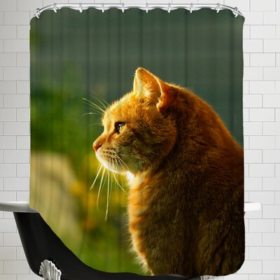 Wonderful Cat with Sun Shower Curtain