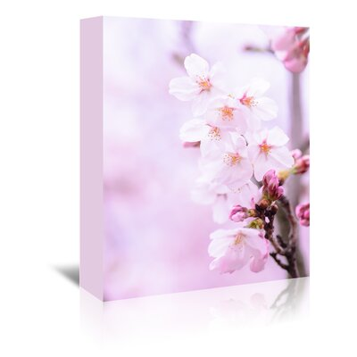 "'Cherry Blossom Japan' Photographic Print on Wrapped Canvas Size: 20"" H x 16"" W x 1.5"" D ESRB1080 34342742"