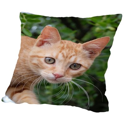 Lovely Cat Throw Pillow Size: 14 H x 14 W x 2 D