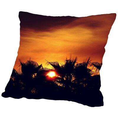 Wonderful Colorful Sunset Throw Pillow Size: 14 H x 14 W x 2 D