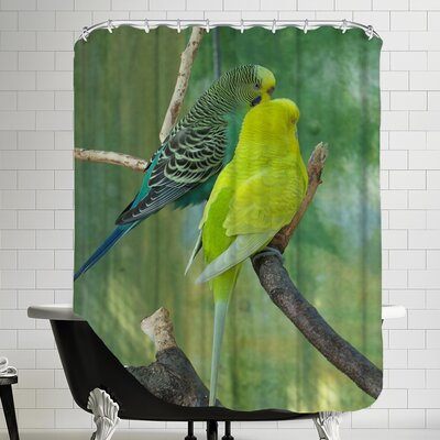 Wildlife Budgie Bird Parrot Shower Curtain