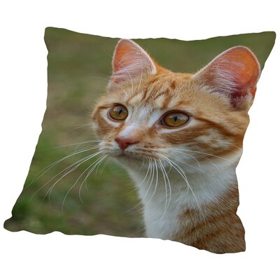 Dangerous Tiger Cat Throw Pillow Size: 16 H x 16 W x 2 D
