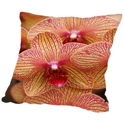 Colorful Exotic Orchid Flower Throw Pillow Size: 14 H x 14 W x 2 D