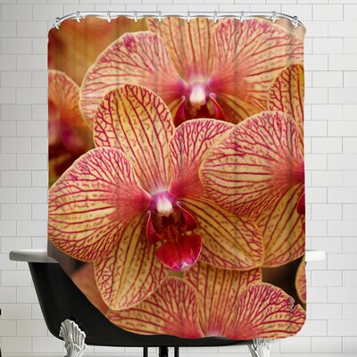 Colorful Exotic Orchid Flower Shower Curtain